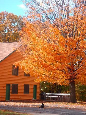 McQuoid's Inn & Event Center: Fall Condo