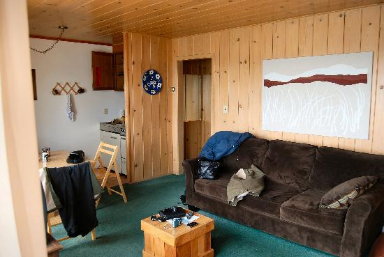 Holiday House: knotty pine