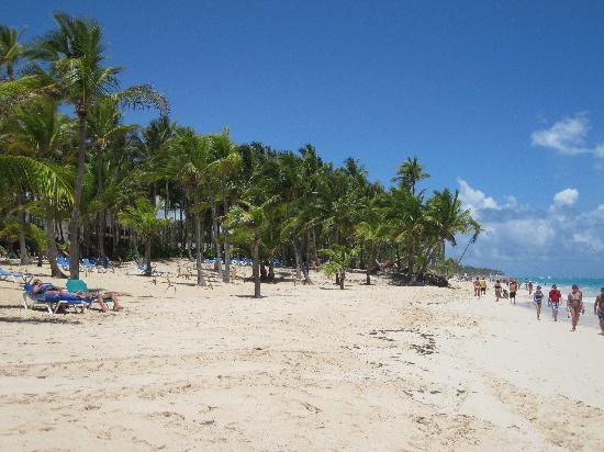 Iberostar Dominicana Hotel: Zona da praia