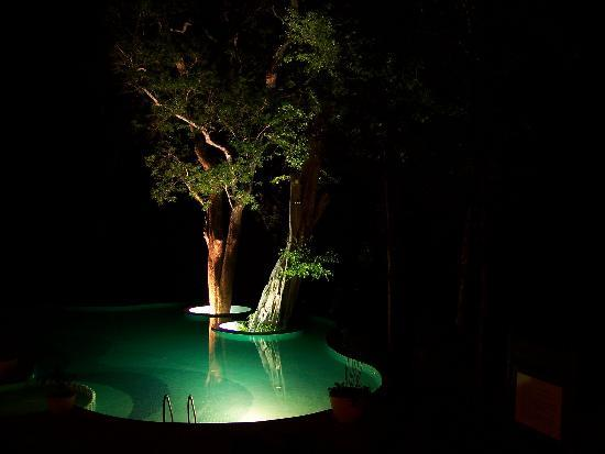 The Windflower Resort and Spa, Coorg: Poolside night