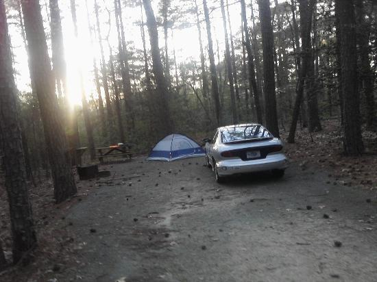 Pocomoke River State Park: Camp.