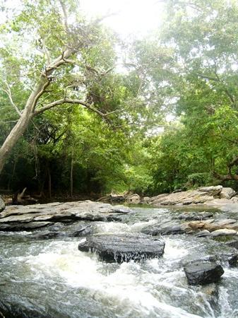 Kataragama, سريلانكا: Menik River