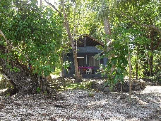 Havannah Eco Lodge bungalow