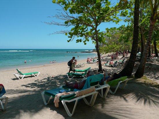 ClubHotel Riu Merengue: riu mambo - la plage