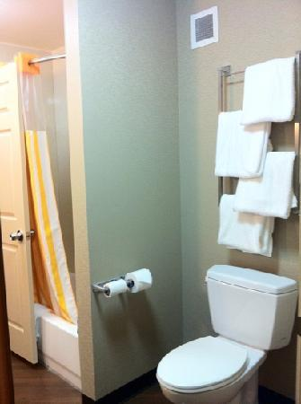 Bathroom of king suite - Picture of La Quinta Inn & Suites Smyrna TN ...