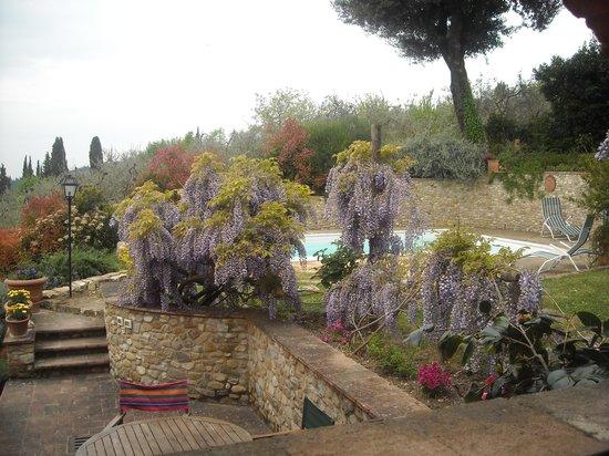 Torre Antica : particolare del giardino