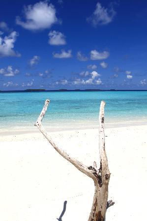 Anantara Kihavah Maldives Villas: View from 'Plates'