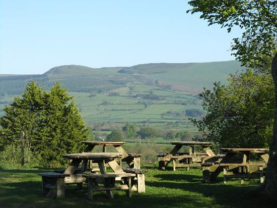 The Harp Inn: Car park view