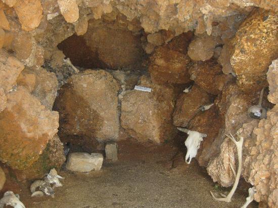 Музей Человека: prehistoric house