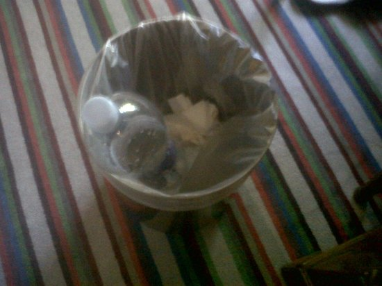 Hotel Schrenkhof: cestino rifiuti non svuotato