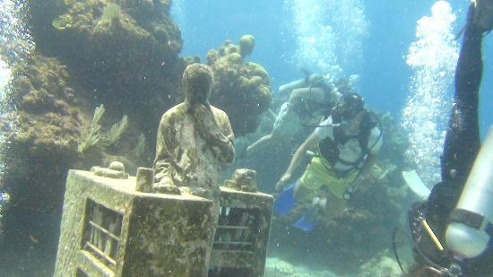 divePro Cancun Diving: Diving at the Underwater Museum