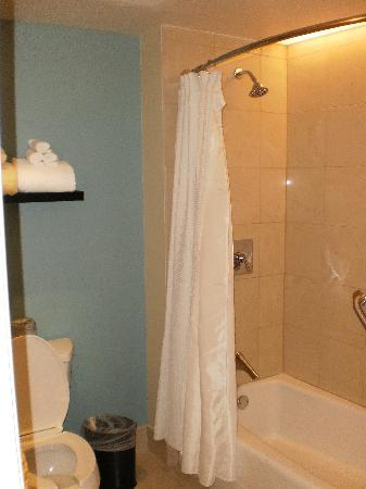 Bay Lake Tower at Disney's Contemporary Resort: Bathroom