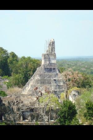 Guatemala City, Guatemala: Tikal!!!