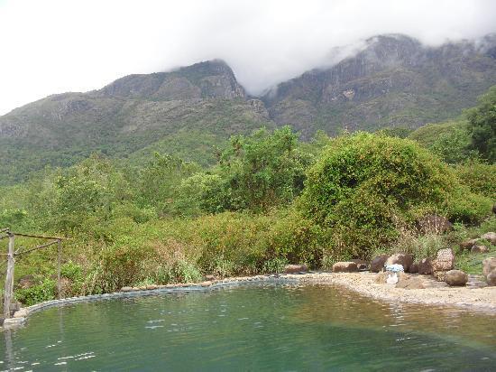 Wild Elephant Picture Of Jungle Retreat Masinagudi Tripadvisor