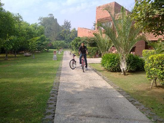 Westin Sohna Resort and Spa: Biking trail...