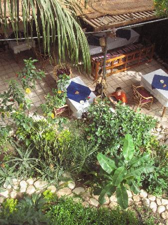 Amon Hotel Luxor : Ulysse in the garden