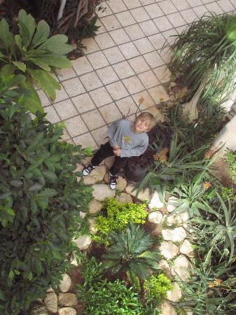 Amon Hotel Luxor: Laszlo in the garden
