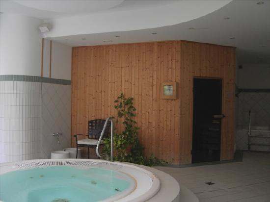 Hotel Schloss Schweinsburg: Whirlpool / Sauna