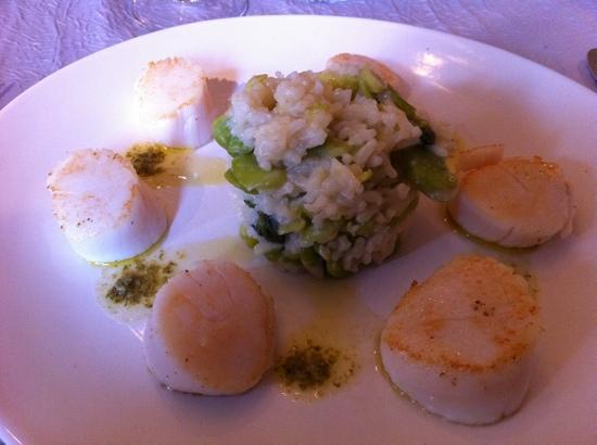 Mr. Robert : Saint-jacque risotto with pesto