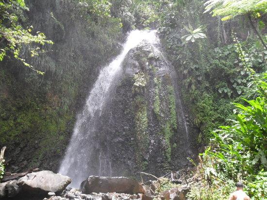Dark View Falls