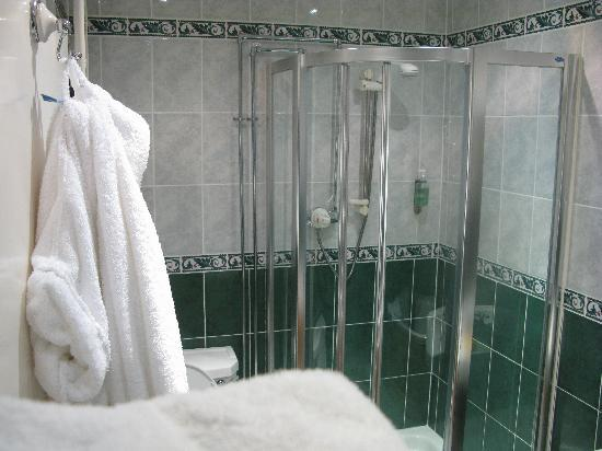 Wolfscastle Country Hotel and Restaurant: Lovely En Suite Shower