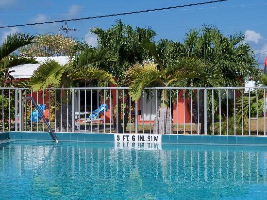 Sea Dell Motel: landscaping around pool