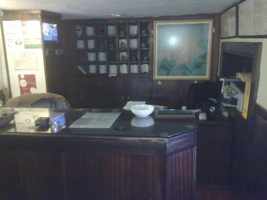 Hotel Senhor de Matosinhos: Recepción