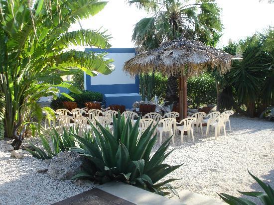 Caribbean Chillout Apartments : filmavond! echt super!