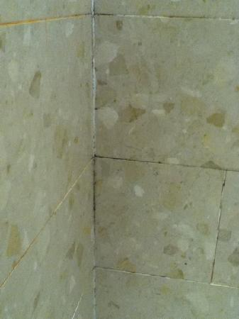 Birchover Darley Abbey: mold on shower