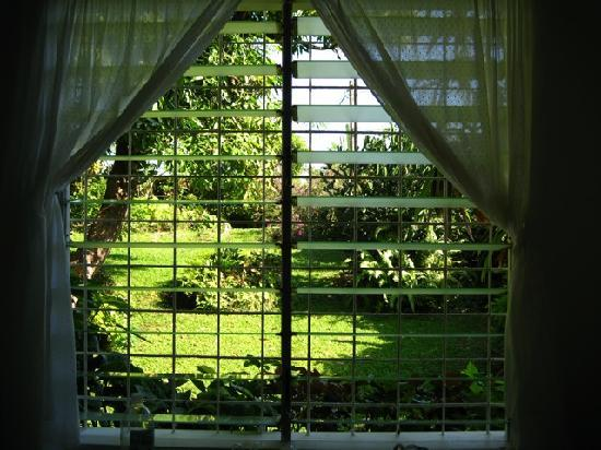 Search-Me-Heart: The garden from the bedroom