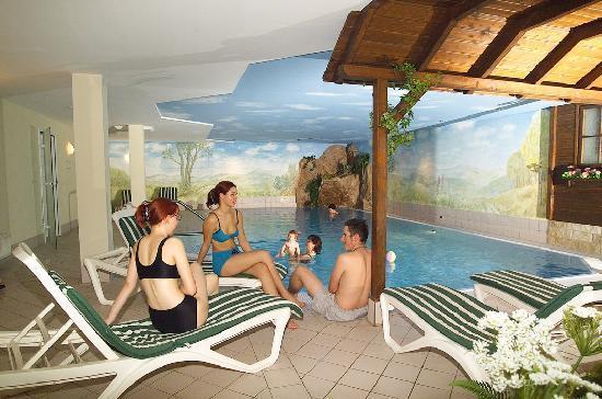 Hotel Schwarzbeerschänke: Hallenbad