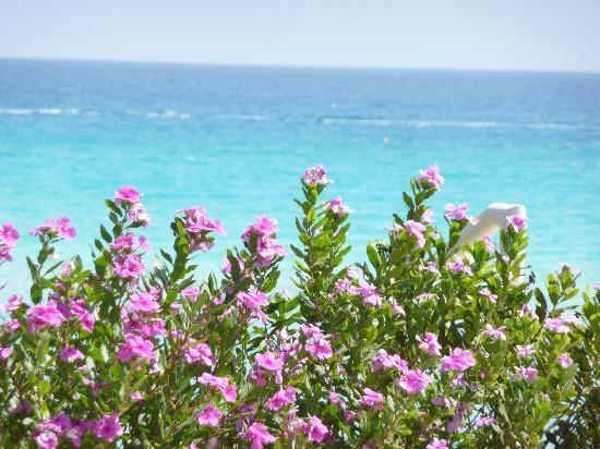 Cavo Maris Beach Hotel : Nissi beach