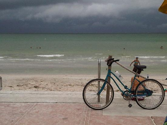 Pass-a-Grille: Sparkling Gulf of Mexico