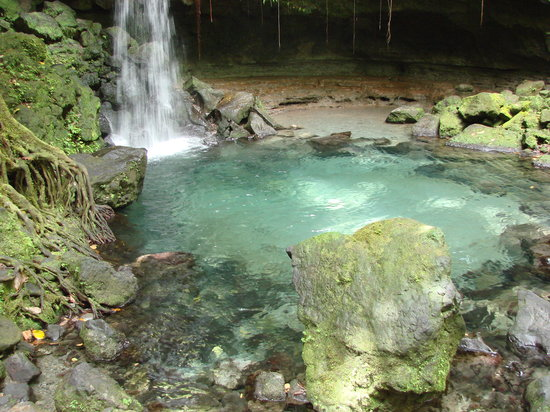 Emerald pool nature trail morne trois pitons national - Crystal clear pools ...
