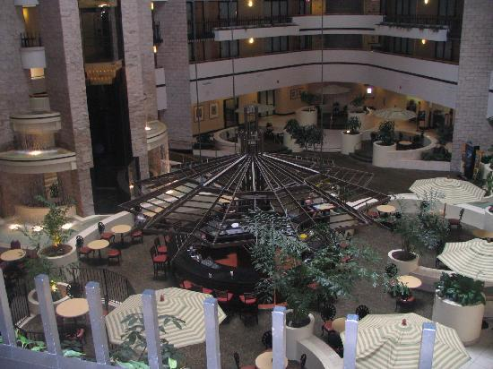Embassy Suites by Hilton Orlando International Drive Jamaican Court: hotel lobby / courtyard area