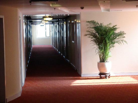 Tianjin Binhai International Airport Hotel: Hotel Corridors