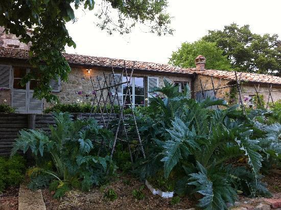 Agriturismo Casa Fabbrini: zappare