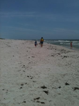 Shell Island: what a walk