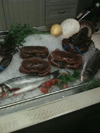 Ristorante Pizzeria Tutto Bono: il pesce freskissimo,crostacei ancora vivi