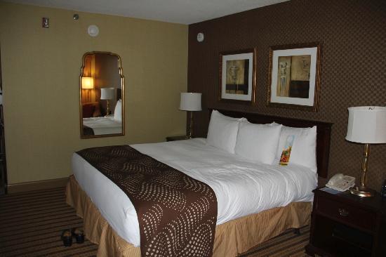 Hilton Parsippany: bed