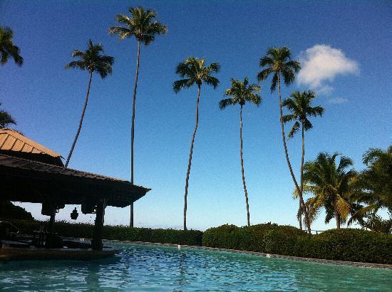 Rincon of the Seas Grand Caribbean Hotel: Pool w/ swim up bar