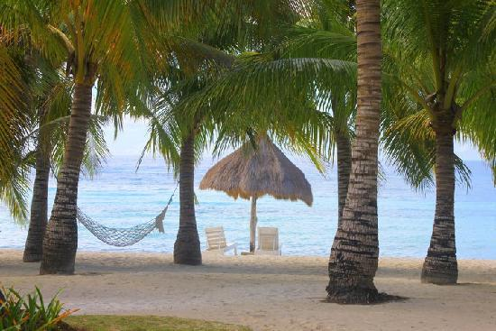 Bohol Beach Club: Our home for a day