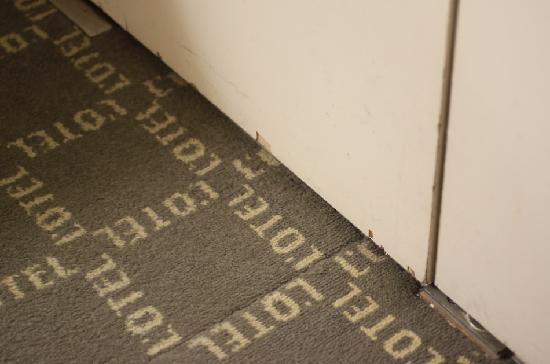 L'Otel: smelly carpet