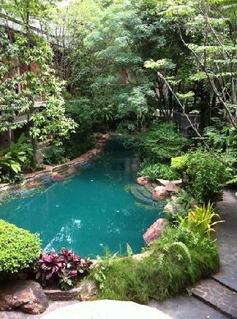 Natural Swimming Pool Picture Of 100 Islands Resort