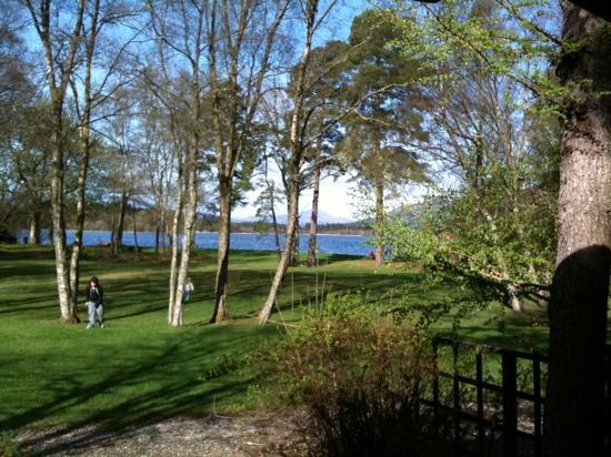 Lochend Chalets : view from living room