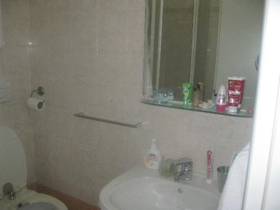 Parioli House: the bathroom
