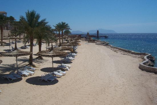 Reef Oasis Blue Bay Resort : Beach linke Seite