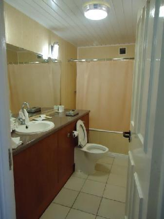 Hillgrove Hotel, Leisure & Spa: Hotel Bathroom