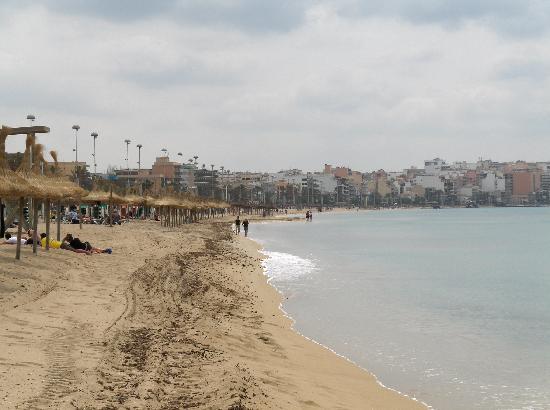 Hotel Piñero Bahia de Palma: Vista da praia