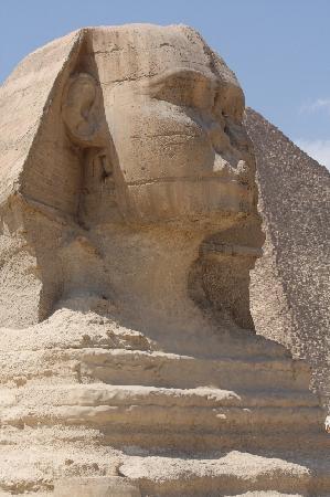 Sphinx : Riese von Gizeh